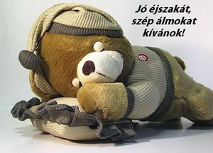 http://borika.hu/images/jo_ejszakat_kivanok.jpg